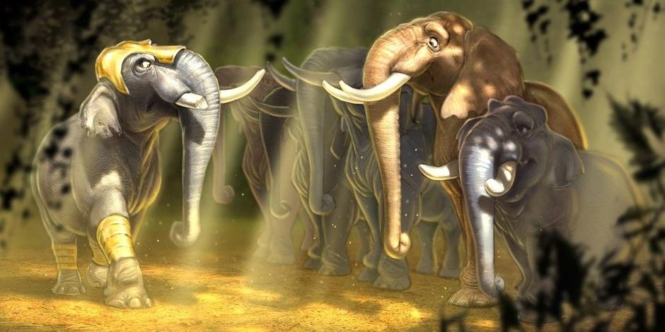 ۱۰۲۶۲۷۲-elephants-1200