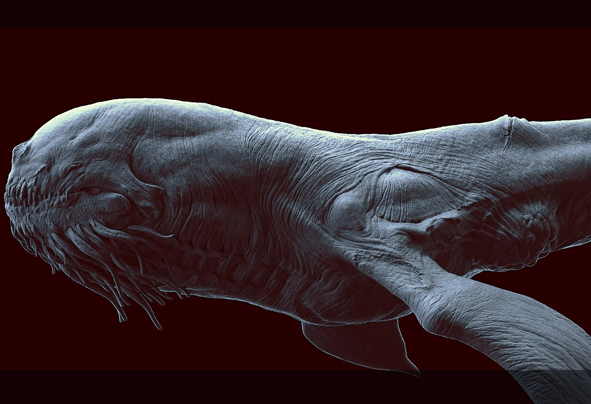 The_Leviathan_Creature_Render_Colin_Thomas_02