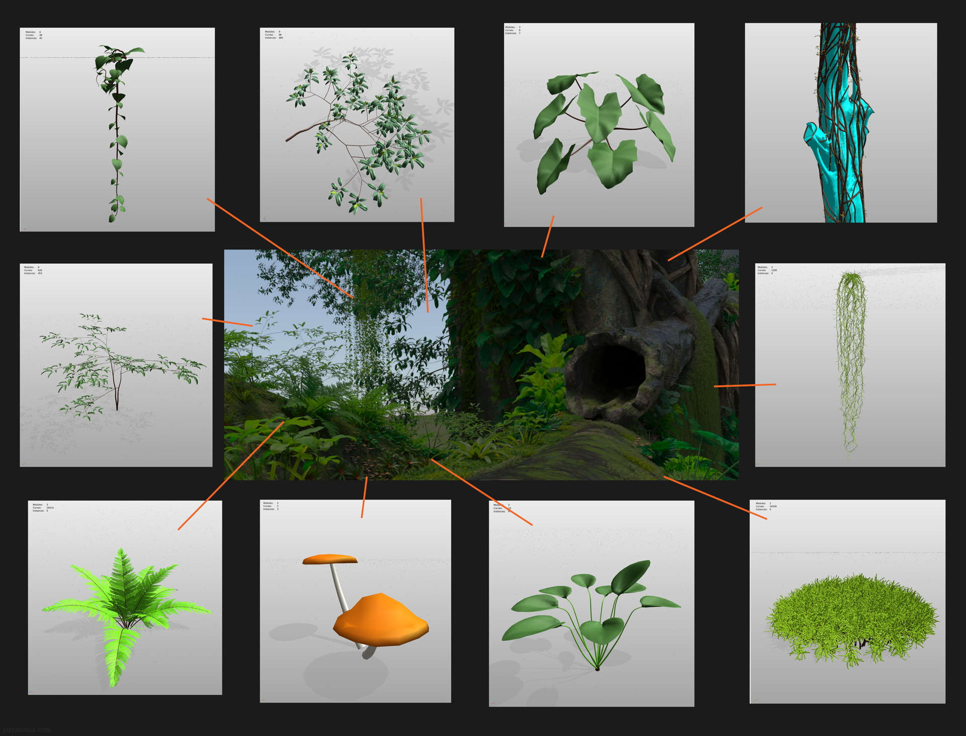 Veg-Bonsai-in-environment