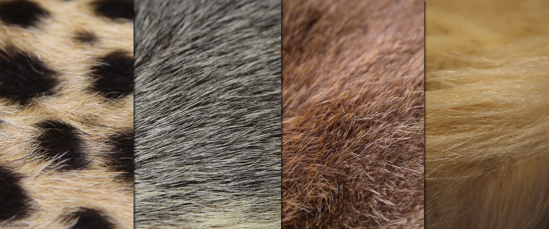 fur-reference
