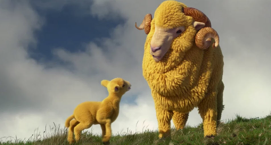 AA Life – Lamb
